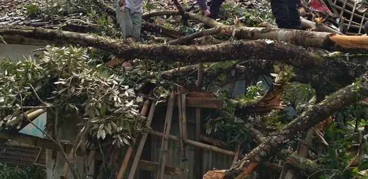 Evakuasi Angin Puting Beliung di Ciawi Kab. Bogor